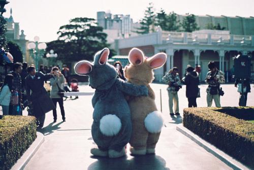 Ludzie-króliki czy Króliki-ludzie? Nie wiadomo. (źródło: pinterest.com)